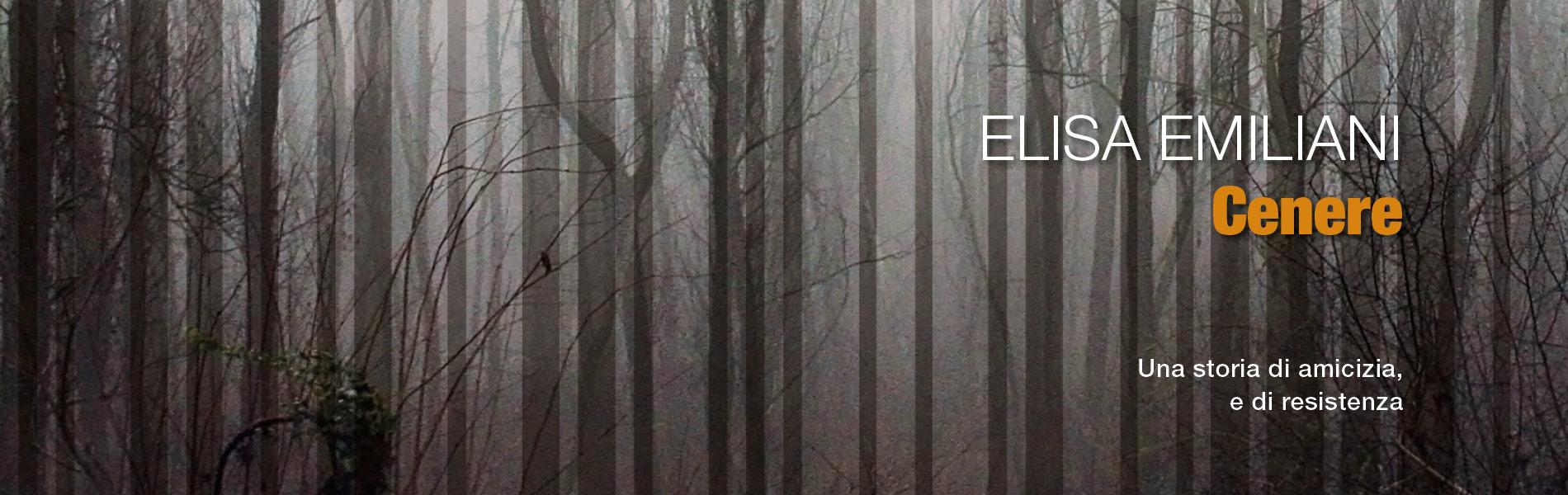 Cenere, di Elisa Emiliani